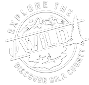 clear_official_explorethewild_logo.png