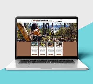 webdesign_1.jpg