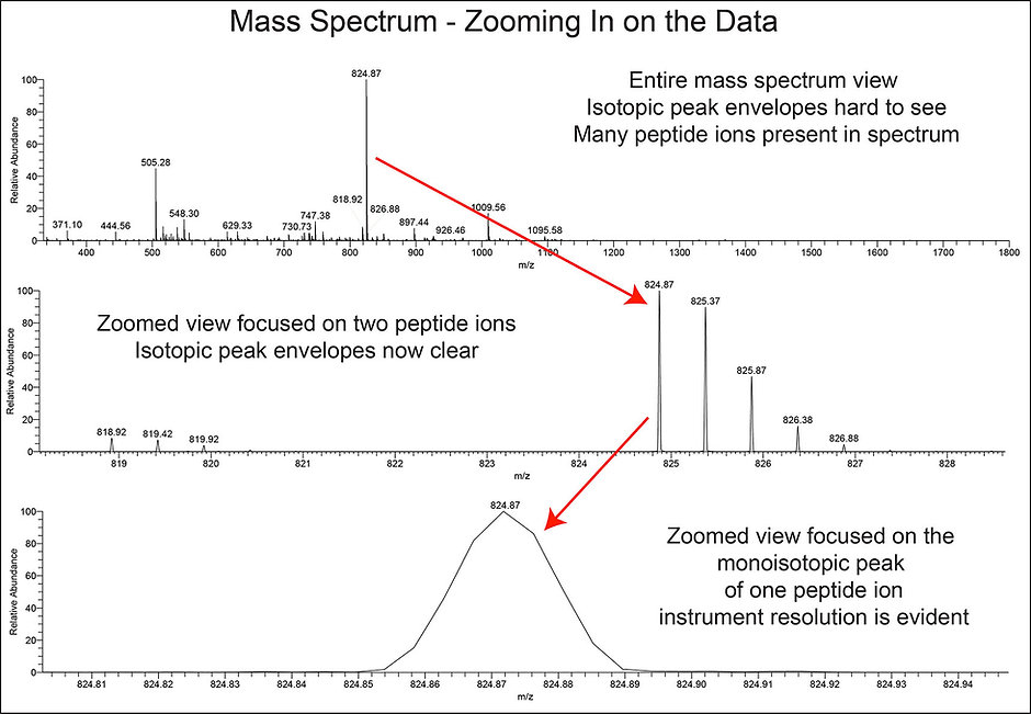 Spectra with Zoom 2.jpg