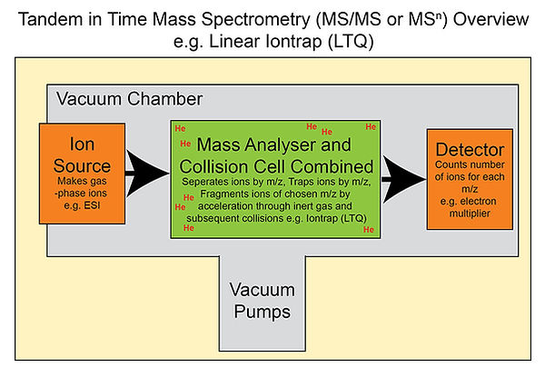 MSMS in time overview.jpg
