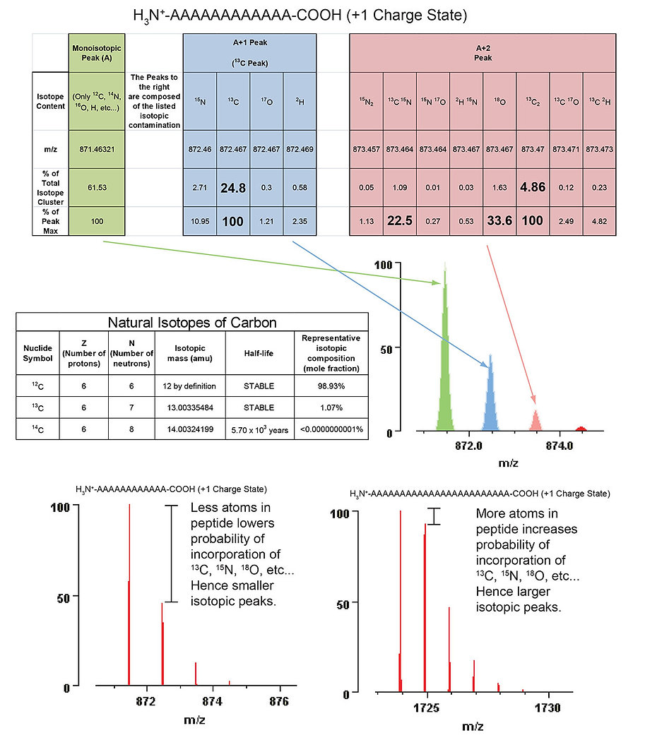 Carbon Isotopes2.jpg