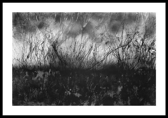 2. Le Chaos 120 x 80 cm.jpg