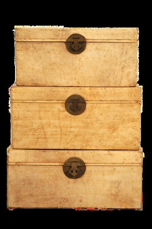 Coffre cuir shangai ancien