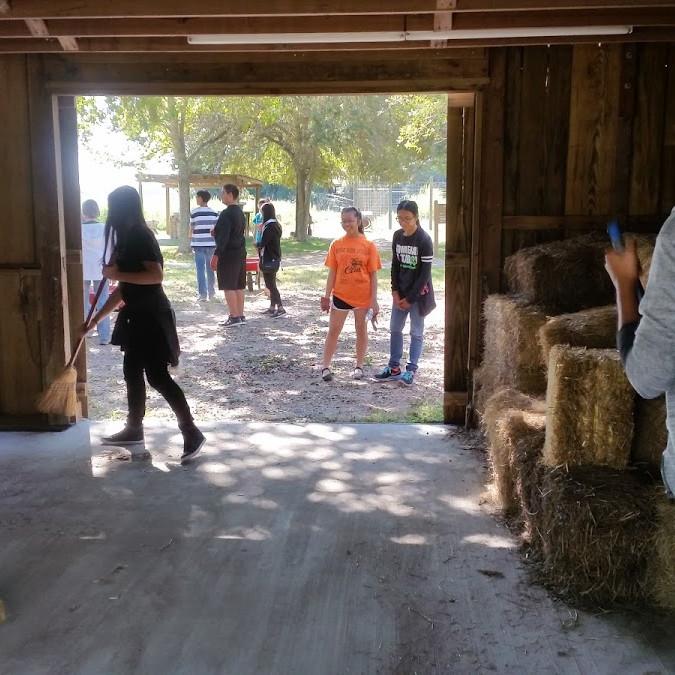 Armond Bayou Service Project