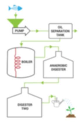 OM process diagram - redrawn-01.jpg