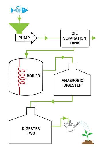 Organic Magic Plant Food Process