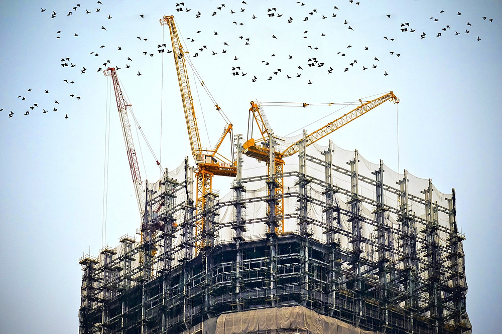 A building construction site with 3 cranes and a flock of birds overhead