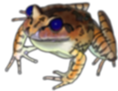 Frog icon 05d fixing toes smaller.png