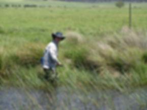 ben field 2 small.jpg