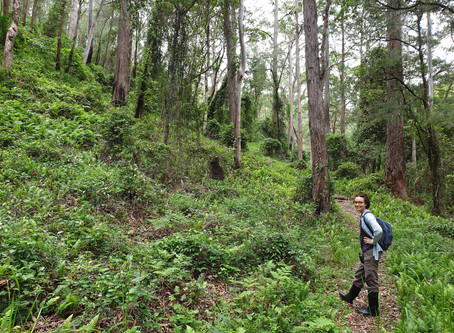 Funded! Thais is awarded the Wildlife Disease Association - Australasia grant!