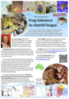 Chytrid tolerance PhD flyer 2.jpg