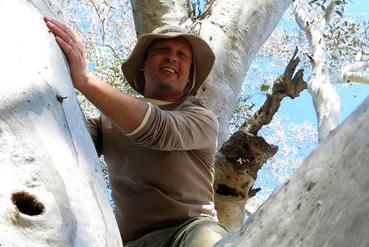 Guy in tree.jpg