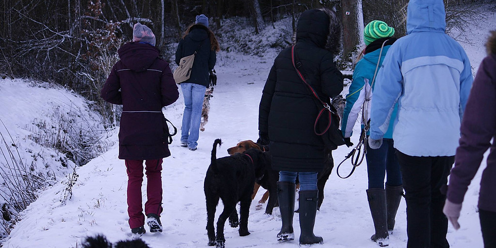 Winter- Wanderung in Cadolzburg