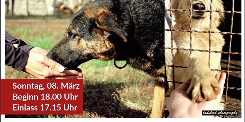 Gerd Schuster Vortrag - Wie kommunizieren Hunde miteinander?