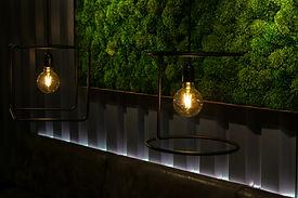 壁面緑化 AdobeStock_351998304.jpeg