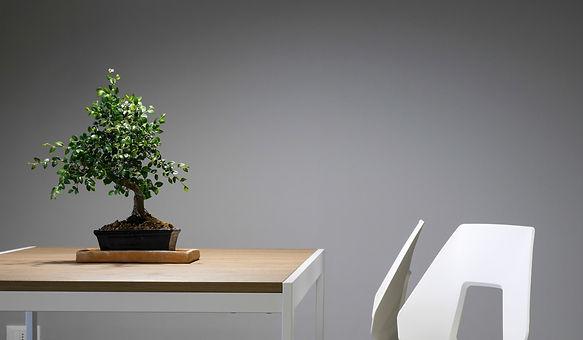 GreenDesign 日本花卉文化株式会社