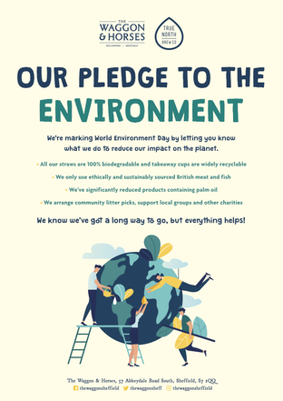 Our Pledge to the Enviroment