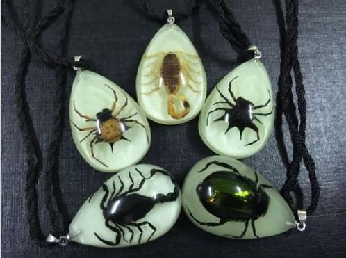 Real Insect Pendants