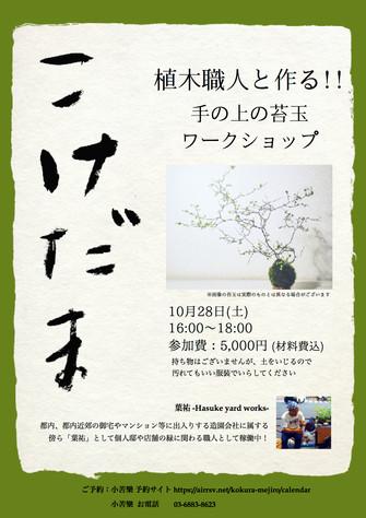 植木職人と作る!! 手の上の苔玉