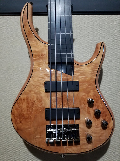 MTD KIngston Z5 Fretless