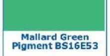 PIGMENTO VERDE ANATRA IN PASTA MALLARD GREEN  2 oz. - 60 grammi