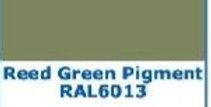 PIGMENTO VERDE CANNA IN PASTA REED GREEN  2 oz. - 60 grammi