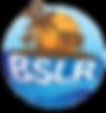 BSL HD LOGO.png