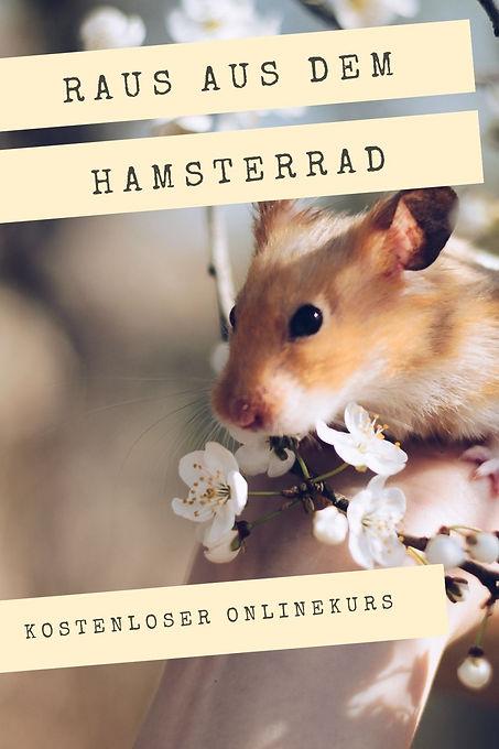 Hamsterrad.jpg