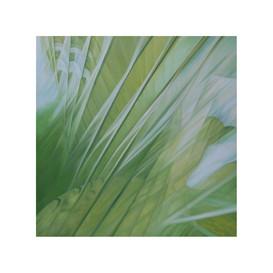Dynamics of a leaf