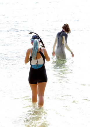 Snorkellers