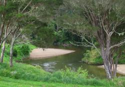 Waitangi River Northland New Zealand