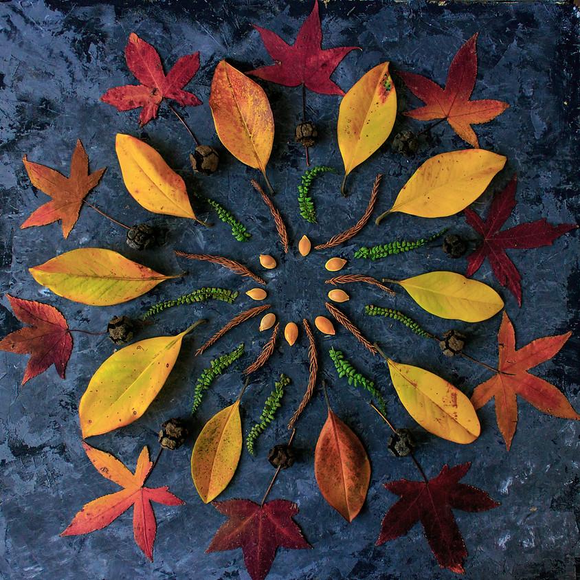 Fall Circle Session - Monday Evening