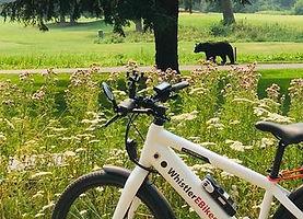 Whistler Bike Tour