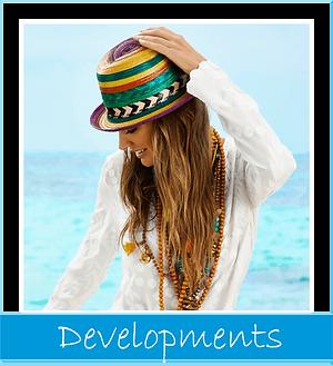 Developments.png
