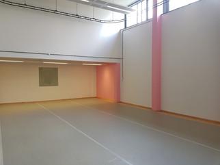 South Wales Ballet School Installs new Harlequin Flooring!