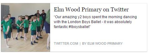 Elm Wood Primary School Boys Ballet