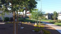 Landsman Gardens 07