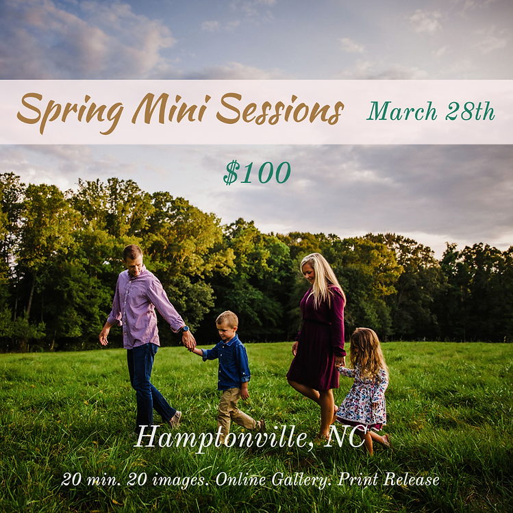 Spring Mini Sessions.png