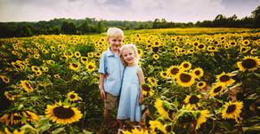 """Love and Sunflowers""  Winston-Salem Family Photographers  Dogwood Farms  Belews Creek, NC"