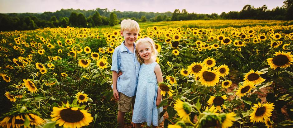 """Love and Sunflowers""| Winston-Salem Family Photographers| Dogwood Farms| Belews Creek, NC"