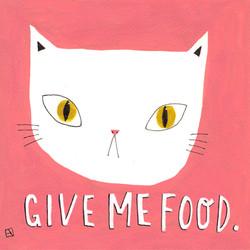 Cat wants food!