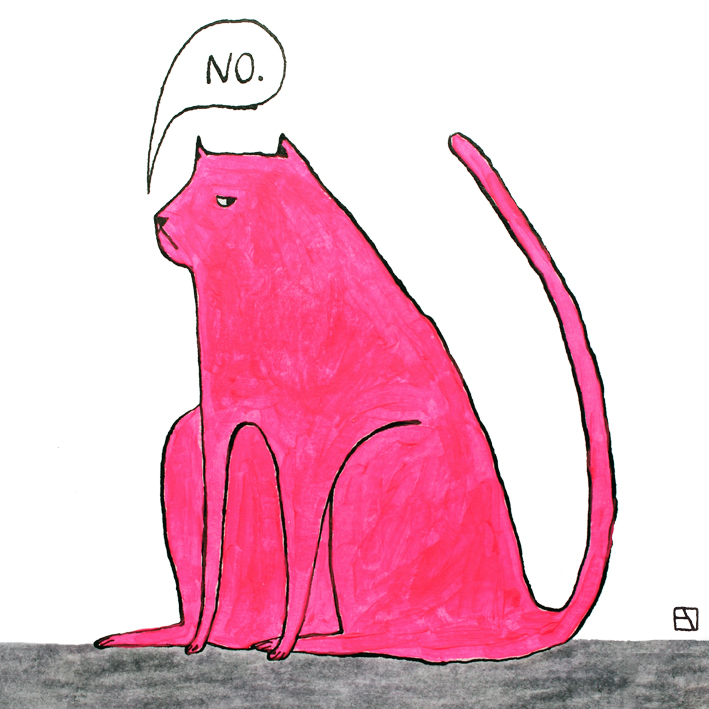 Cat says NO