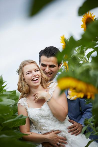 Brautpaar in den Sonnenblumen, Blumenfeld in Allschwil