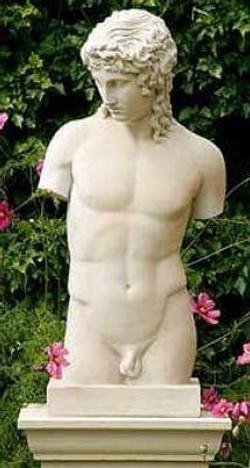 busto Arcade (male torso) no 373