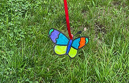Look Out! Flying Bug Craft