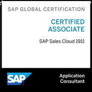 sap-certified-application-associate-sap-