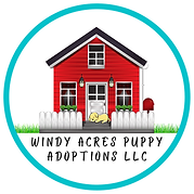 Windy Acres Puppies (3).png
