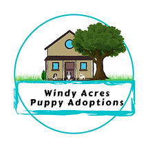 Windy Acres Puppies.png