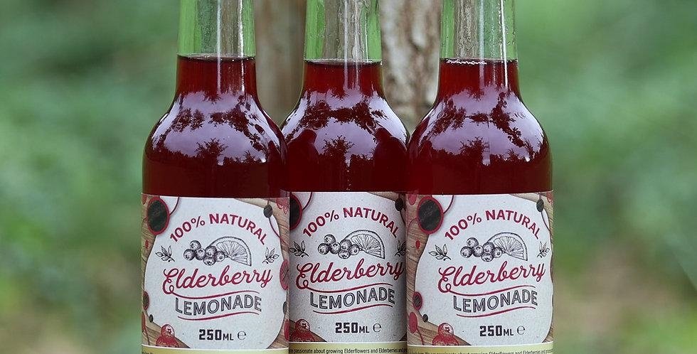 Elderberry Lemonade (12 Pack)