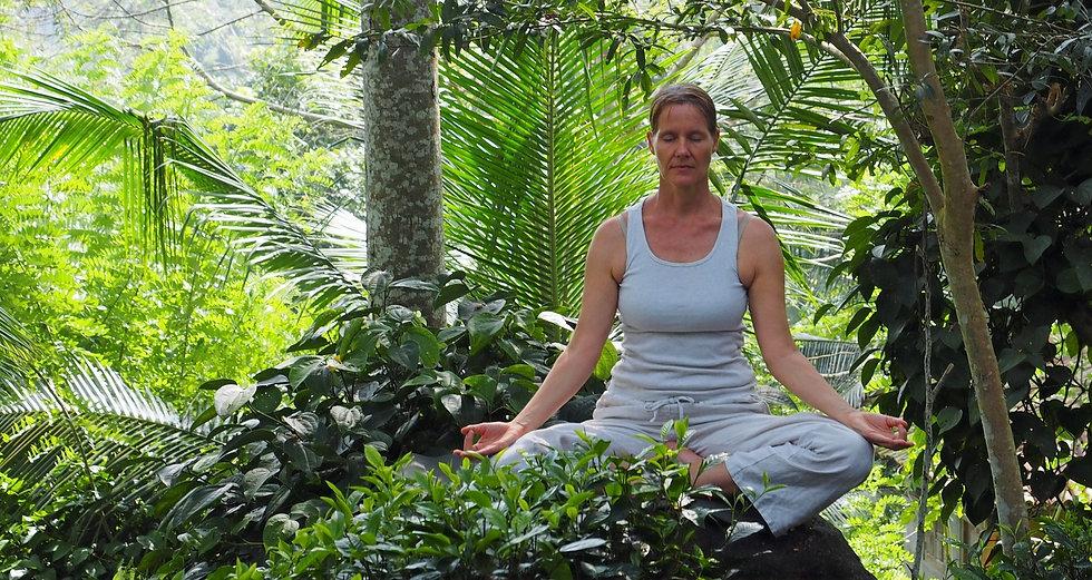 Plantation Meditation 2